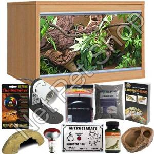 Leopard Gecko Starter Kit With LX24 Beech