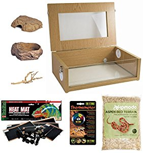 Corn Snake Starter Kit - Small Vivarium (18