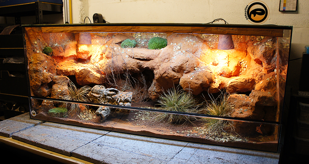 Ideas for bearded dragon terrarium decor for Decoration habitat