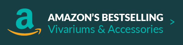 Best Selling Vivariums on Amazon