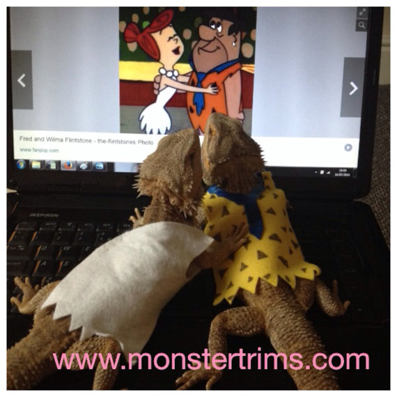 Fred Flintstone costume, Bearded dragon clothes