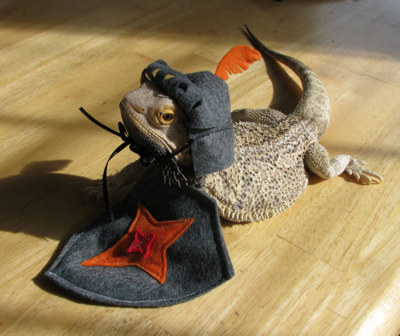 Knight in Shining Armor Costume for Bearded Dragons! One size fits most.