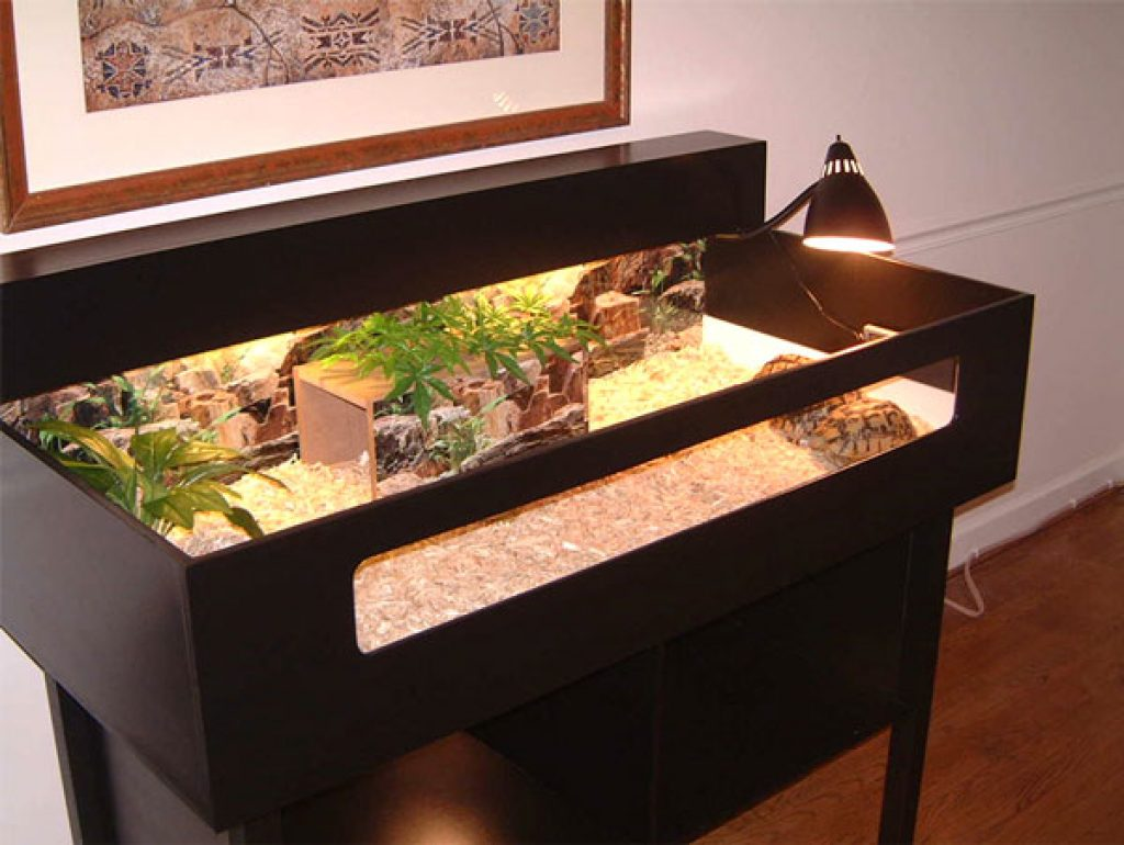 How to set up a tortoise table easy setup guide vivarium world tortoise table tortoise table tortoise table aloadofball Image collections