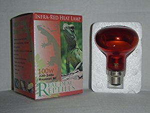 Reptile and Poultry 100w Infrared Heat Lamp Bulb Bayonet Fitting Brooding Basking Spot Light