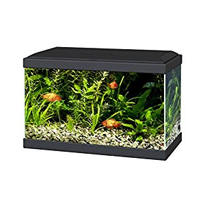 Ciano Aqua 20 Aquarium with LED Lights & Filter BLACK