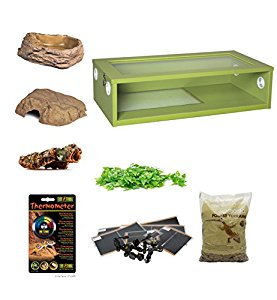 Royal Python Large Monkfield Vivarium Starter Kit - Green 30...