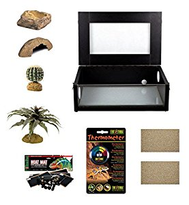Small Leopard Gecko Starter Kit - Monkfield Vivarium Black (18 Inch)