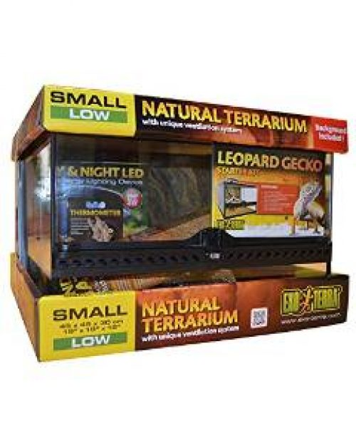 Best Leopard Gecko Starter Kits Vivarium World