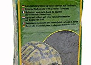 How To Set Up A Tortoise Table Easy Setup Guide