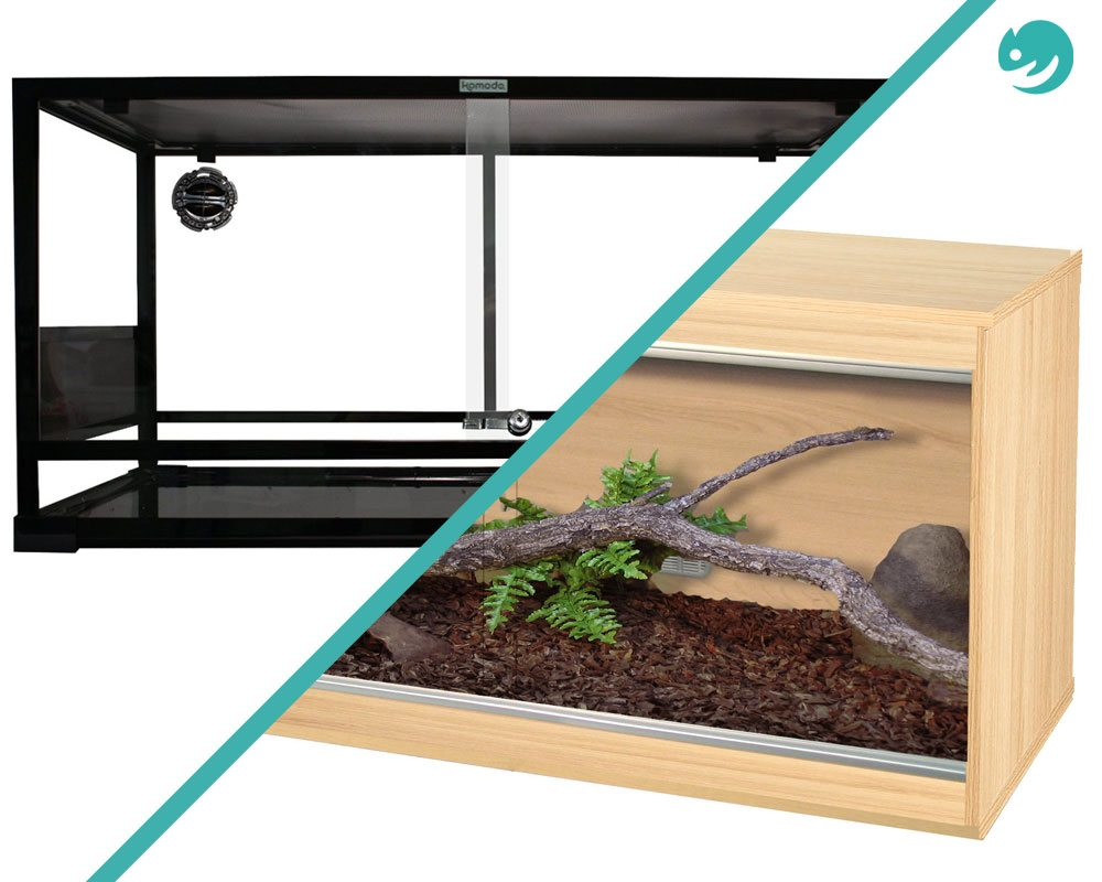 Glass vs. Wooden Vivariums – Which is Better?