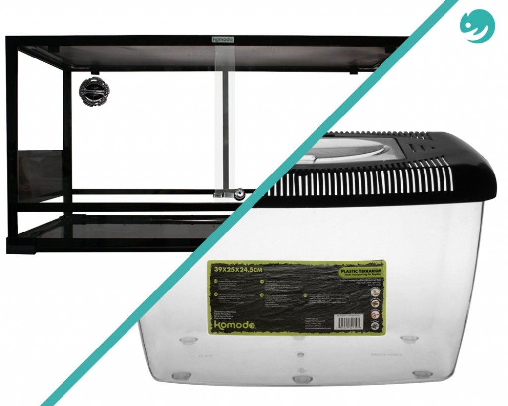 Plastic or Glass Vivariums - which is better?