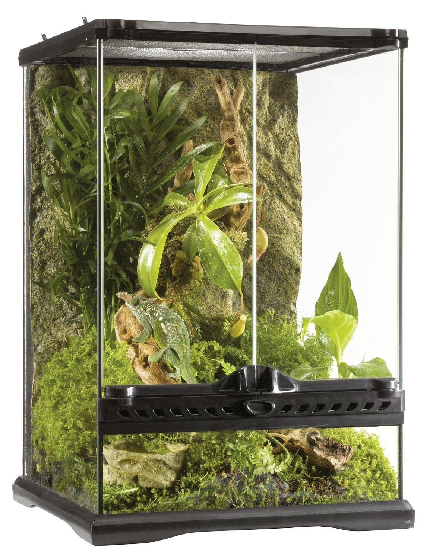 Exo Terra Glass Natural Terrarium, Mini/Tall, 30 x 30 x...