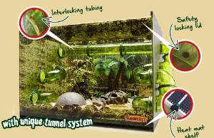 SNAKE VIVARIUM : EVERYTHING YOU NEED EXCEPT YOUR SNAKE