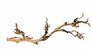 Exo Terra Forest Branch, Large (Exact Size May Vary)