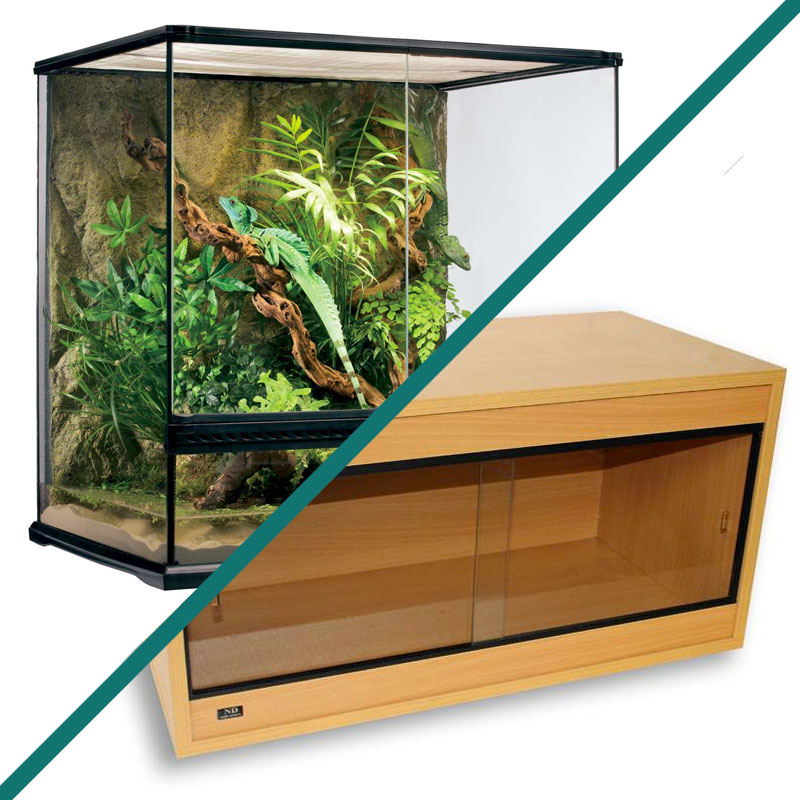 Vivarium vs Terrarium – What's the Difference?